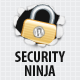 Security Ninja