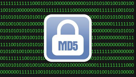 MD5 Algorithm - WordPress Security